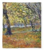 November In Hyde Park Fleece Blanket