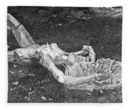 Nude In The Park Fleece Blanket