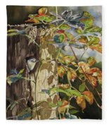 Nuthatch And Creeper Fleece Blanket