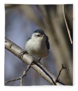 Nuthatch On Perch Fleece Blanket