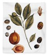 Nutmeg, 1735 Fleece Blanket