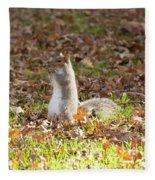 Nuts For Fall Fleece Blanket