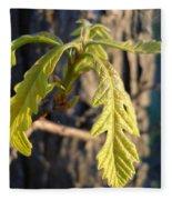 Oak Leaves In May Dawn Light Fleece Blanket