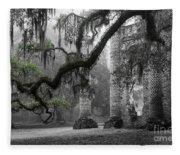 Oak Limb At Old Sheldon Church Fleece Blanket