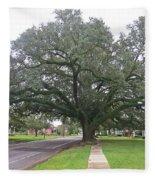 Oak  Tree  Jennings  Louisiana Fleece Blanket