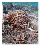 Ocean Fiji Fleece Blanket