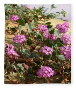 Ocotilla Wells Pink Flowers 2 Fleece Blanket