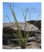 Ocotillo Of Desert Southwest Fleece Blanket
