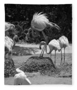 Odd Bird Out In Black And White Fleece Blanket