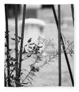 Odd Fellows Graveyard Fleece Blanket