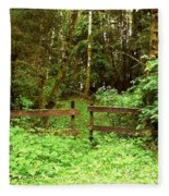 Off The Beaten Path Haida Gwaii Bc Fleece Blanket