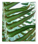 Office Art Ferns Green Forest Fern Giclee Prints Baslee Troutman Fleece Blanket