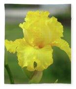 Office Art Irises Yellow Iris Flower Giclee Prints Baslee Troutman Fleece Blanket