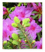 Office Art Pine Conifer Pink Azalea Flowers 38 Azaleas Giclee Art Prints Baslee Troutman Fleece Blanket