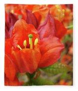 Office Art Prints Orange Azalea Flowers 20 Giclee Prints Baslee Troutman Fleece Blanket