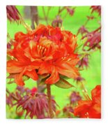 Office Art Prints Orange Azalea Flowers Landscape 13 Giclee Prints Baslee Troutman Fleece Blanket