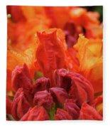 Office Art Prints Orange Azaleas Flowers 9 Giclee Prints Baslee Troutman Fleece Blanket