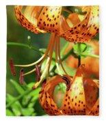 Office Art Prints Tiger Lilies Flowers Giclee Baslee Troutman Fleece Blanket