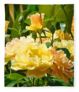 Office Art Rose Garden Giclee Prints Roses Baslee Troutman Fleece Blanket