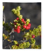 Ohelo Berries Fleece Blanket