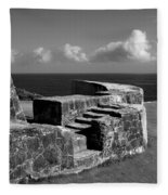 Old Fort Steps 2 Fleece Blanket