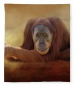 Old Man Orangutan Fleece Blanket