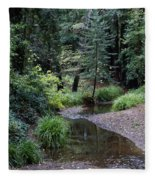 Old Mill Park In Mill Valley 2 Fleece Blanket