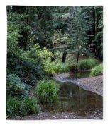 Old Mill Park In Mill Valley Fleece Blanket