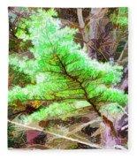 Old Pine Tree 1 Fleece Blanket
