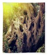 Old Sacred Olive Tree  Fleece Blanket