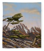 Old Timers Fleece Blanket