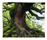 Old Tree In Kyoto Fleece Blanket