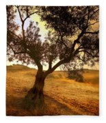 Olive Tree Dawn Fleece Blanket