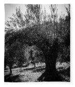 Olive Trees In Italy 2 Fleece Blanket