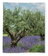 Olive Trees Of Provence Fleece Blanket