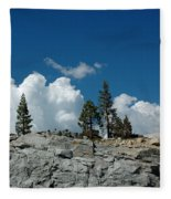 Olmsted Point Pine Rear View Fleece Blanket