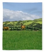 On The Look-out. Fleece Blanket