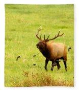On The Range Fleece Blanket