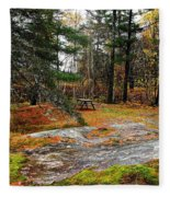 Picnic On The Rocks Fleece Blanket