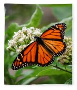 Once Upon A Butterfly 001 Fleece Blanket