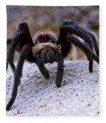 One Big Hairy Spider Fleece Blanket