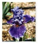 One Sole Iris In Bloom Fleece Blanket