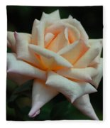 Only A Rose Fleece Blanket