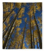 Onward Toward The Sky Fleece Blanket