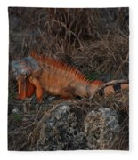 Oranage Iguana Fleece Blanket