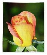 Orange And Yellow Rose Fleece Blanket