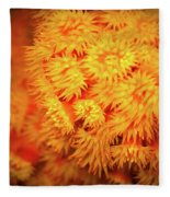 Orange Anemones Fleece Blanket
