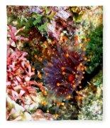 Orange Ball Corallimorph Anemone Fleece Blanket