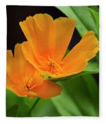 Orange California Poppies Fleece Blanket