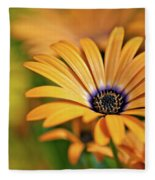 Orange Crush Fleece Blanket
